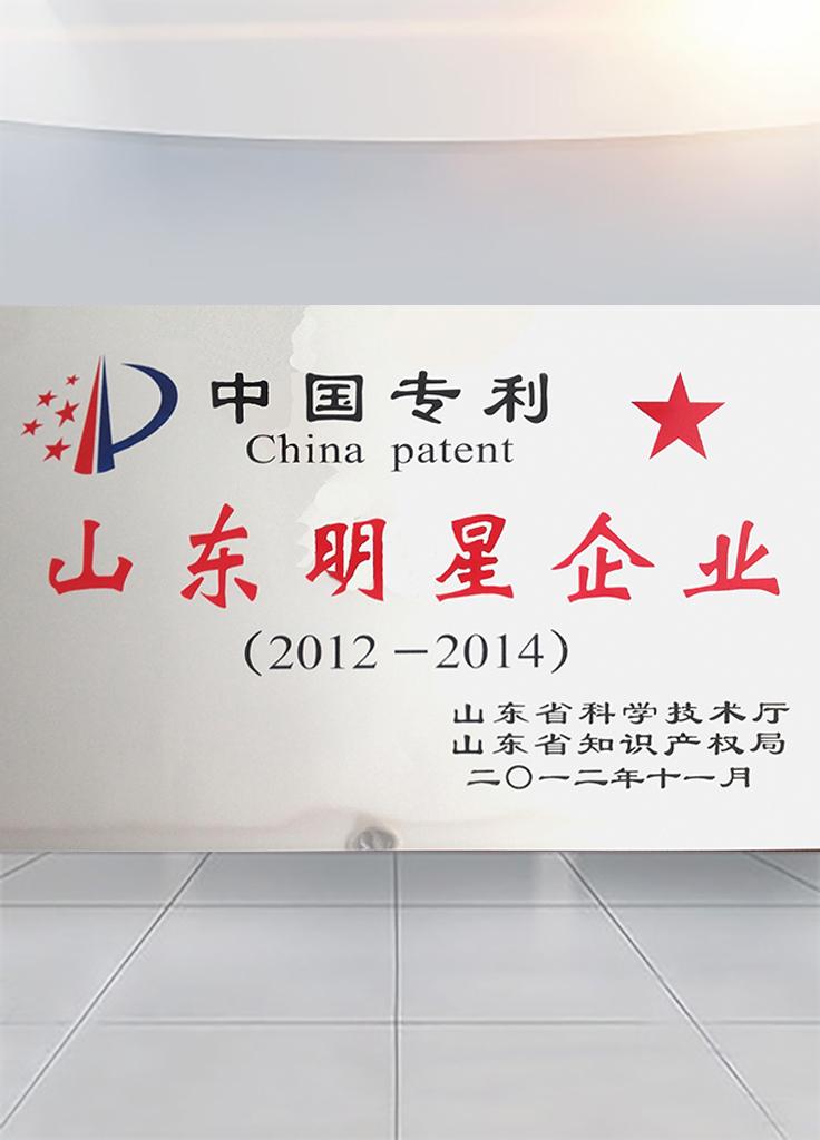 山东bwin赞助皇马时间能源科技-专利明星企业证书